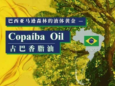巴西亚马逊森林的液体黄金:古巴香脂精油